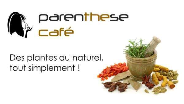 des-plantes-au-naturel-tout-simplement-parenthese-cafe-small