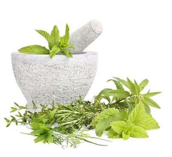 Gamme herboristerie bio - Parenthese Café