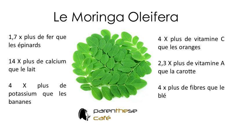 Le moringa Oleifera Parenthese Café