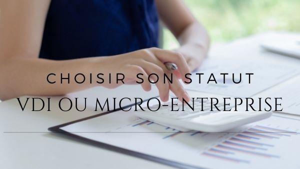 VDI ou micro-entrepreneur - Bien choisir son statut